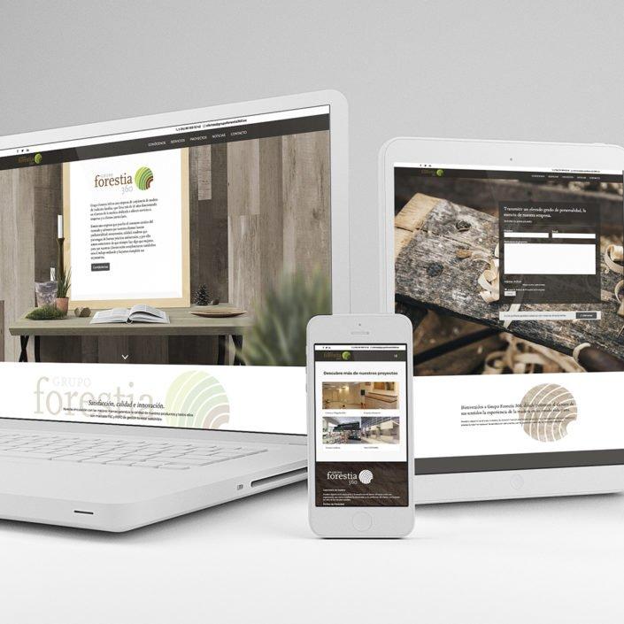 diseño web carpintería Valencia